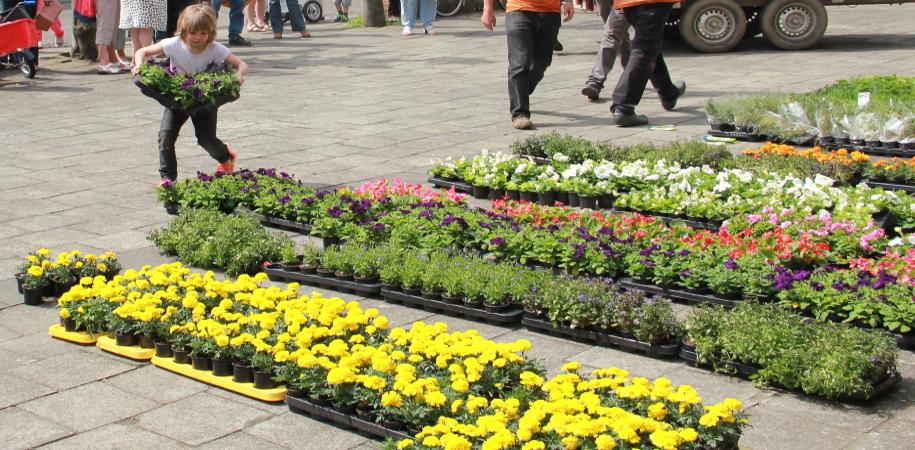bloembakkenactie 2011